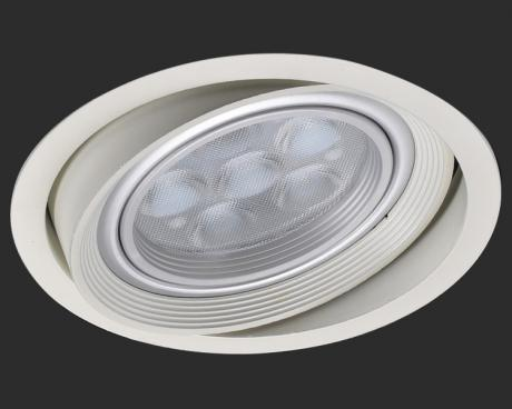 Narrow frame type 60 ° adjustable downlight